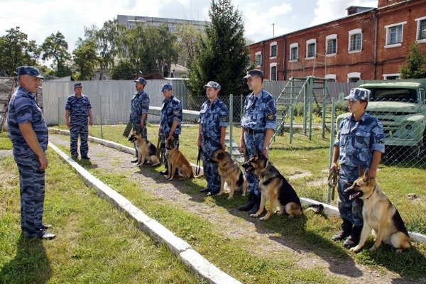 Service Dog Center will be opened in Nizhny Novgorod