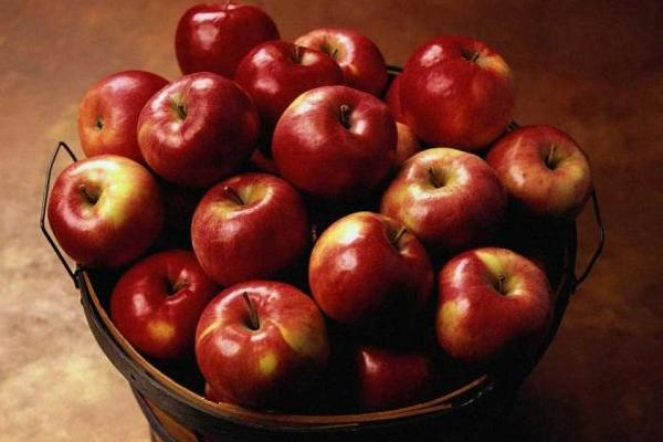 Apple Day celebration will be held in Nizhny Novgorod, Russia